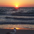 Naples Sunset 0042 by Laurie Paci