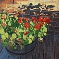 Nasturtiums In Late Light by Allan OMarra