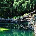Natural Verde by Dion Baker