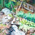 Nature Walk by Anne Rhodes