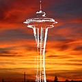 Needle Silhouette by Tim Allen