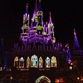 Neon Castle by Lindsay Clark