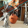 New Mexico Rabbits by Rob Hans