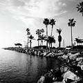 Newport Beach Jetty by Paul Velgos