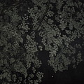Night Leaves II by Pamela Smith