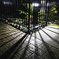 Night Shadows by Helaine Cummins