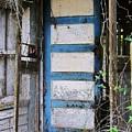 Nobody Home by Leslie Revels