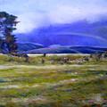 Northeast Tasmania Australia 1995  by Enver Larney