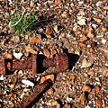 Nuts And Bolts Rusted by Douglas Barnett