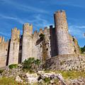 Obidos Castle by Carlos Caetano