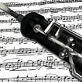 Oboe by Kerstin Schroeder
