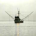 Ocean Fishing Boat by Alice Eckmann