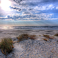 Ocracoke Winter Dunes II by Dan Carmichael