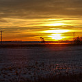 Oil Well Sunset by Christy Patino