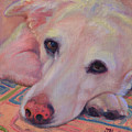 Ol' Yellow Lab by Julie Hart