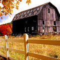 Old Barn In Autumn by Roger Soule