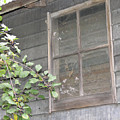 Old Barn Window by Janis Beauchamp