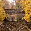 Old Bridge by Nancy Barch