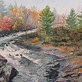 Old Burleigh Stream by Debbie Homewood
