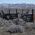 Old Corral by Susan Pedrini