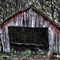 Old Dave's Front Barn by Dennis Sullivan