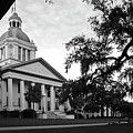 Old Florida State Capitol Building by Wayne Denmark