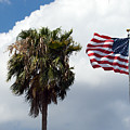 Old Glory Monument At Titusville Florida by Allan  Hughes