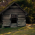Old Log Cabin by Kim Henderson