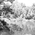 Old Michigan Creek by Derek Clark
