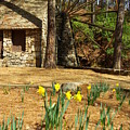 Old Mill At Berry College by Rebecca McAllister