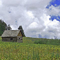 Old Ranchers Summer Cabin Redone by Ernie Echols