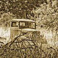 Old Truck by Linda McRae