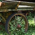Old Wagon by Dennis Stein