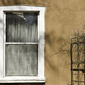 Old Window by Carmo Correia