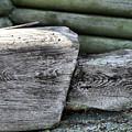 Old Wood by Jouko Lehto