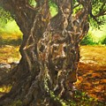 Olive Tree Rooted 1 by Lizzy Forrester