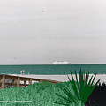 On A Florida Beach by Michael Chatman