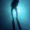One Scuba Diver Underwater by Sami Sarkis
