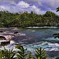 Onomea Bay Hawaii by Gary Beeler