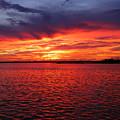 Orange Burst At Daybreak by Karen Wiles