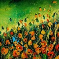 Orange Poppies 459080 by Pol Ledent