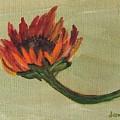 Orange Sunflower by Jamie Frier