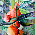 Oranges by Mindy Newman