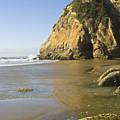 Oregon Coast by Terry Wieckert