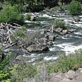 Oregon Stream by Liz Santie