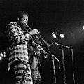 Ornette Coleman On Trumpet by Lee  Santa