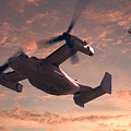 Ospreys In Flight by Mike McGlothlen