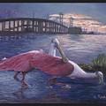 Packery Sunset by Linda Speaker