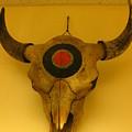 Painted Bison Skull by Austen Brauker