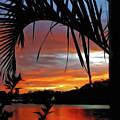 Palm Framed Sunset by Kaye Menner